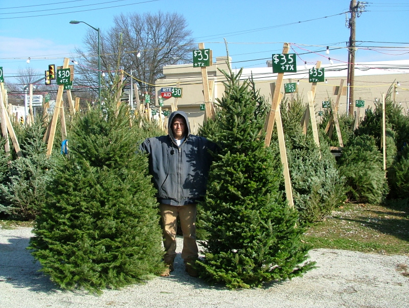 Selling Christmas Trees in Lansdowne PA For over 40 years ...