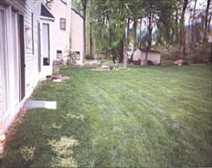 Flagstone Patio w_wall Before.jpg (23314 bytes)