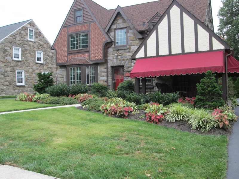 Front Planting a few years after planting. Drexel Hill, PA