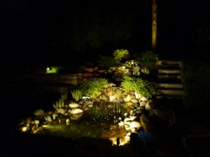 Back Yard Pond lit up while other lesser features are still in the dark.