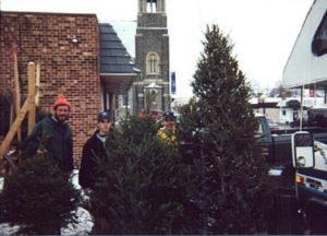 Three sizes of Christmas trees.jpg (26722 bytes)