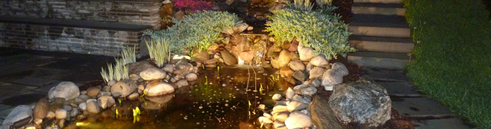 Night Lighting around Pond - Newtown Square PA