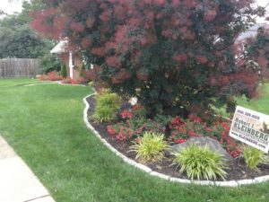 Front beds Drexel Hill, PA
